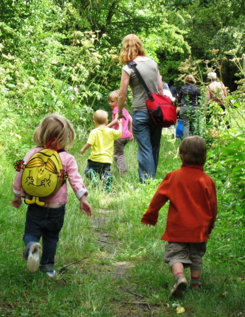 Guided walk with a local nursery