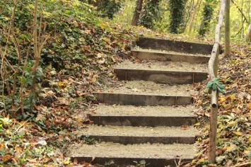The completed steps